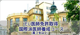 EU医師免許取得 国際派医師養成コース